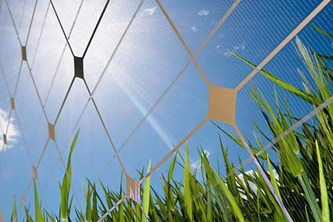 Solar power to be the cheapest energy source in the future