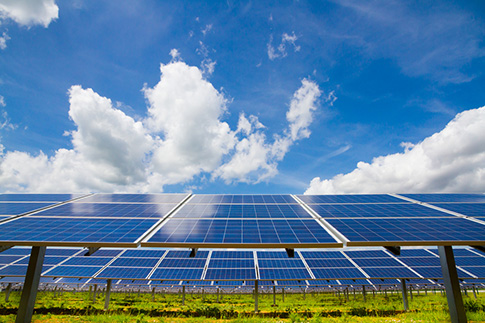 Solar power undercutting fossil fuel prices in India_Wordpress