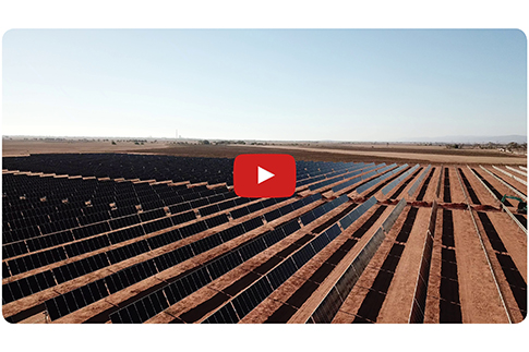 Pirie Solar Farm: Progress Update